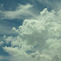 Photos: 暑い~、今日も雨降るかな