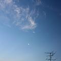 写真: 薄暮れないの月