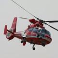 Photos: 名古屋市消防航空隊 JA6779 「ひでよし」 IMG_1628_2