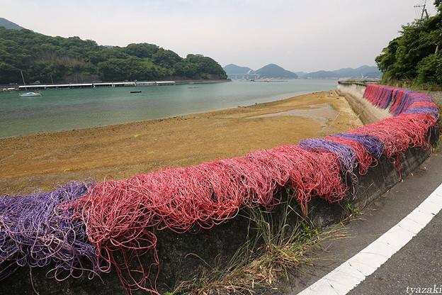 瀬戸の漁網2