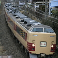 Photos: 183系「新宿さざなみ1号」代走最終日