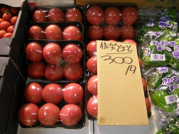 トマト @川崎市中央卸売市場 北部市場