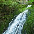白水の滝 E-M10 3