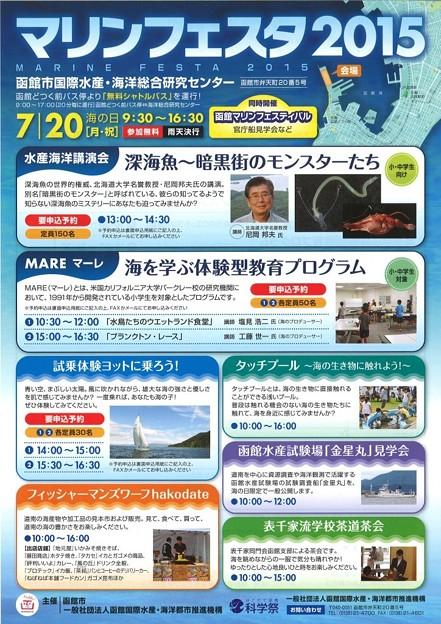 marinefes2015