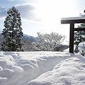 Photos: 戸隠奥社 NEX-5 E18-55OSS