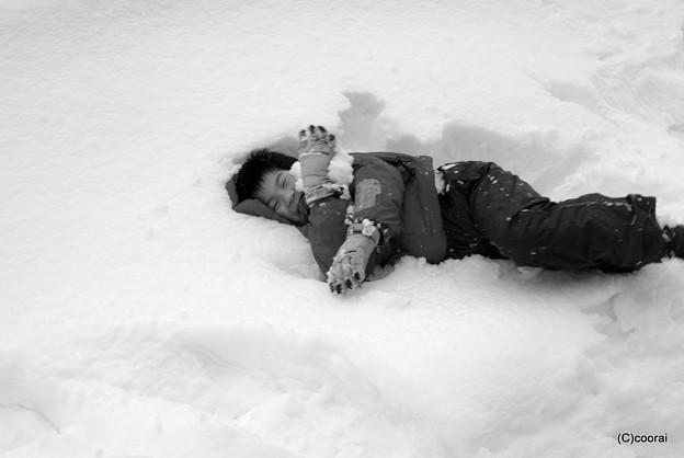 写真: 雪が大好きだぁ~!