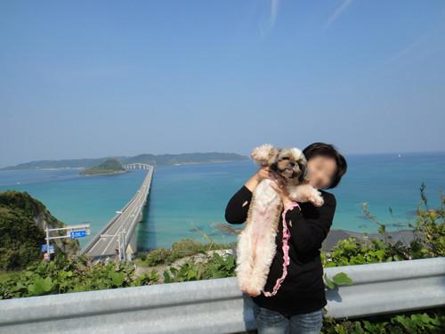 角島さくらと記念撮影2