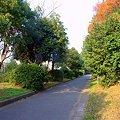 Photos: DSC_6090.NEF