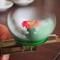 『愛しき玩具』・『一握の汗』 Toy Lotus