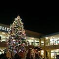 写真: 2011 グランベリーモール クリスマスツリー