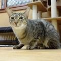 Photos: マサキ「まぢか!!」