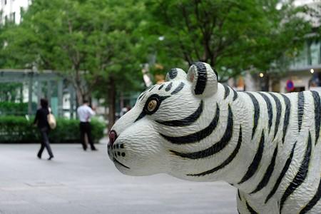 2015.09.14 丸の内仲通り 「Animal 2012-01B」 三沢厚彦 2015