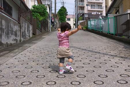 2011.06.03 近所 姫 朝散歩