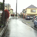 Photos: 雨の裏道