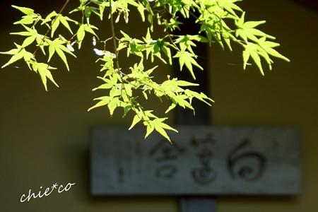 東慶寺~水無月-260