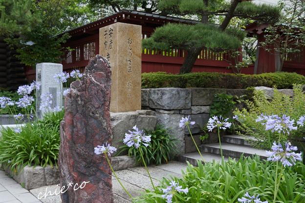 鎌倉-289