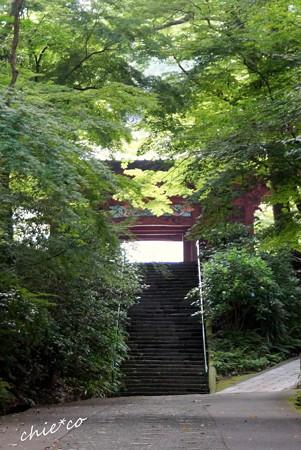 鎌倉-358