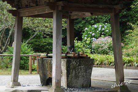 鎌倉-367