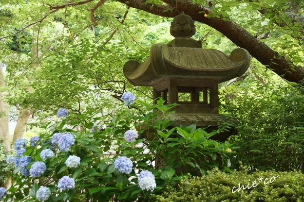 鎌倉-369