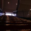 Photos: 黄金の階段