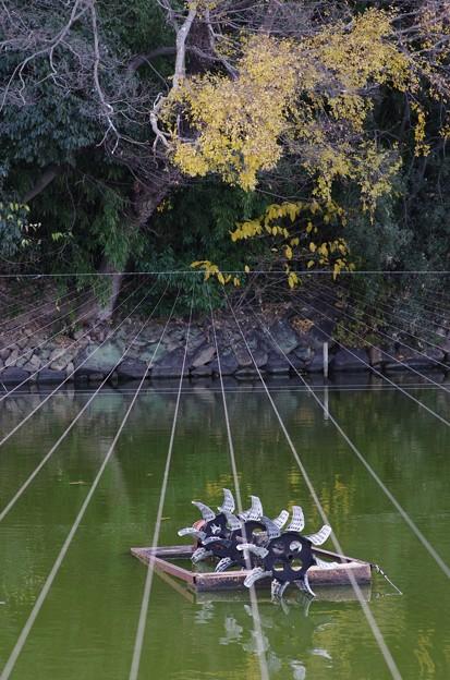 魚釣り禁止ロープ