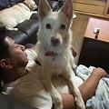 Photos: 甘えてくる♪