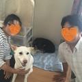 Photos: 結愛(ゆあ)に家族が出来ました!