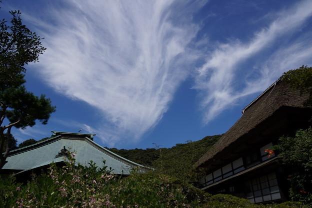 海蔵寺の秋雲20150912