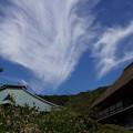 Photos: 海蔵寺の秋雲20150912