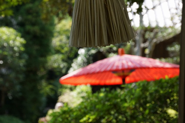 Photos: 赤い傘と鐘の綱20150912