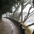 Photos: 後楽園散歩道