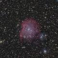 写真: モンキー星雲