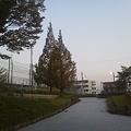 Photos: NEC_0711