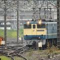 Photos: EF65 PF原色2121号機新鶴見機関区発車