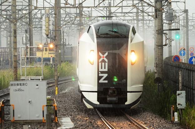 E259系特急成田エクスプレス30号 大雨の新川崎通過