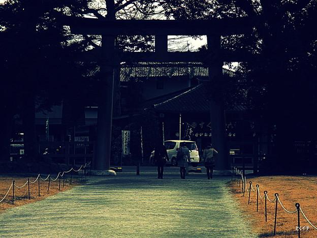 上賀茂神社 5