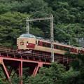 Photos: 189系 M51編成 ホリデー快速富士山