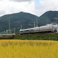 E351 大糸線100周年号 回9212M