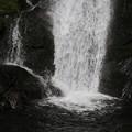 150629-57海沢園地へ滝を求めて・大滝