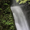 150629-59海沢園地へ滝を求めて・大滝