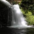 150629-67海沢園地へ滝を求めて・三ツ釜ノ滝