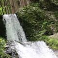 150629-71海沢園地へ滝を求めて・三ツ釜ノ滝