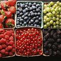 Six Kinds of Berries