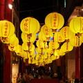 Photos: 黄色のランタン