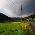 Photos: 谷間の秋