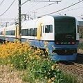 Photos: 菜の花とVEW255