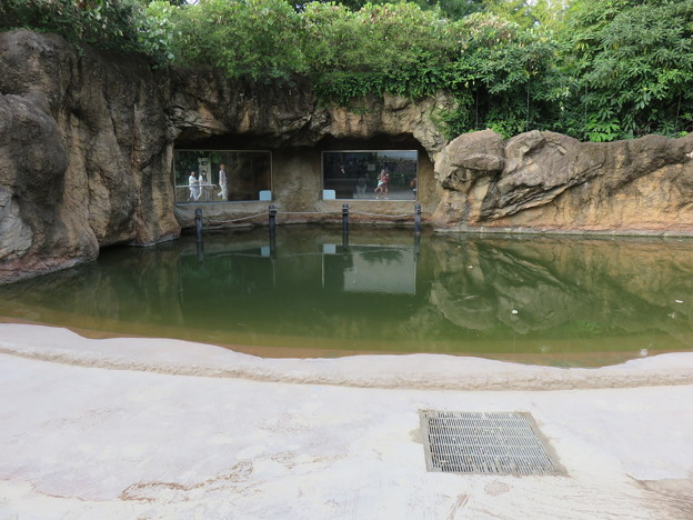 上野動物園09