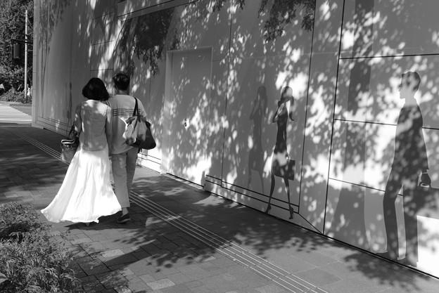 恋人たちのプロムナード~散歩道♪
