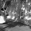 Photos: 恋人たちのプロムナード~散歩道♪