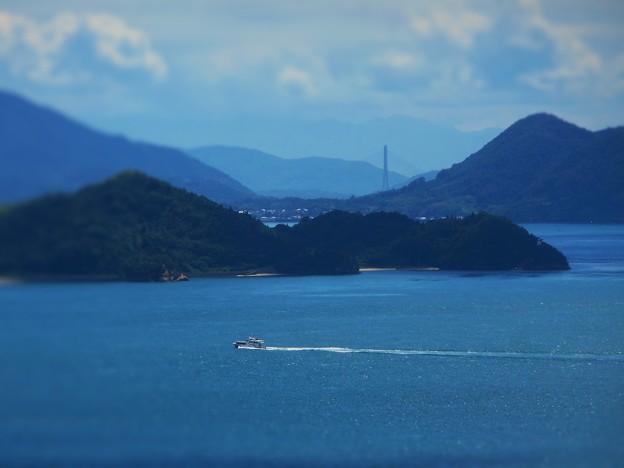 真夏の海を連絡船が走る~糸崎の丘より~